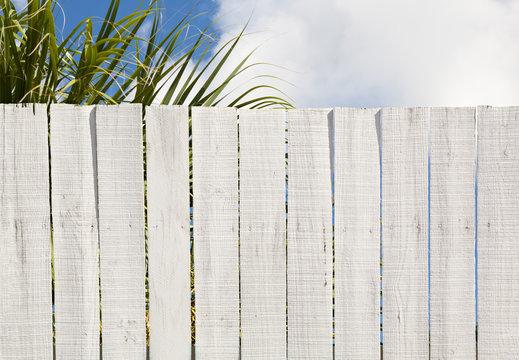 Vintage White Wood Board Fence