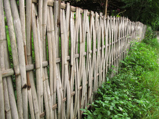 Old bamboo fence in rural area
