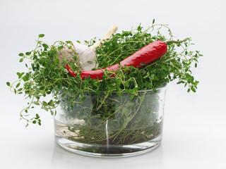 Knoblauch Paprika und Thymian
