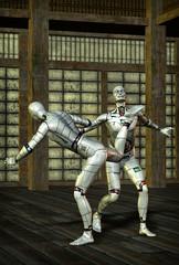 martial arts robot kung fu