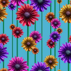 Pattern coneflower