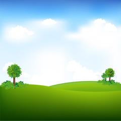 Sky And Landscape