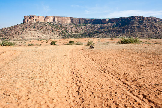 Desert at the base of the cliff, Mali (Africa)