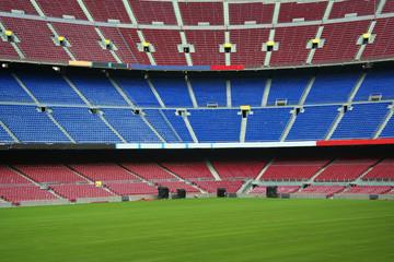 Foto op Plexiglas Stadion green grass