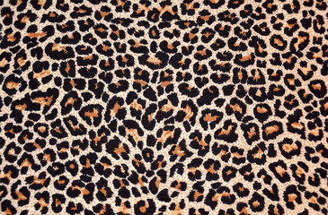 Photo sur Aluminium Leopard abstract texture of leopard fur (skin)