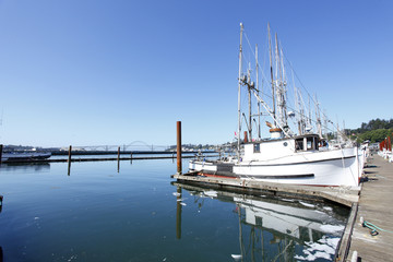 View of fishing boats docked in Newport, Oregon