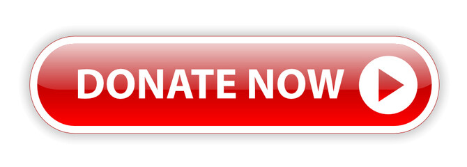 """DONATE NOW"" Web Button (charity donation money give contribute)"