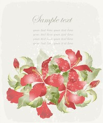 Greeting card with hibiscus. Illustration hibiscus.
