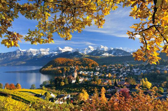 Spiez am Thunersee mit Berner Alpen