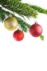 rote Christbaumkugeln an Tannenzweig isoliert auf weiß