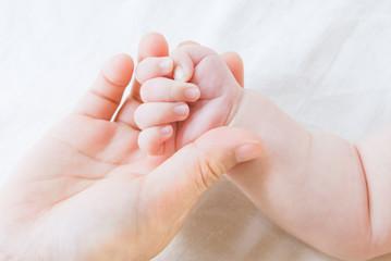 親子の手と手