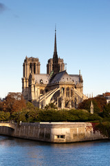 Wall Mural - Cathédrale Notre Dame de Paris, France