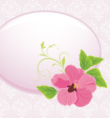 Frame with pink flower on the decorative background