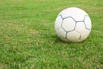 Ball in the yard.