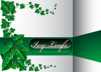 Beautiful Ivy Leaf Background