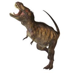Tyrannosaurus Rex 02