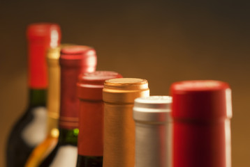 Fototapete - Wine bottles in a row with limited depth of field