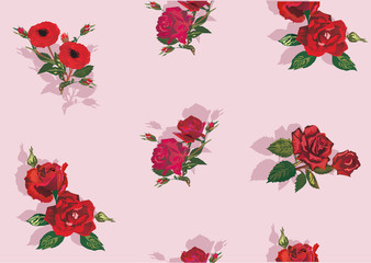 illustration with red rose background