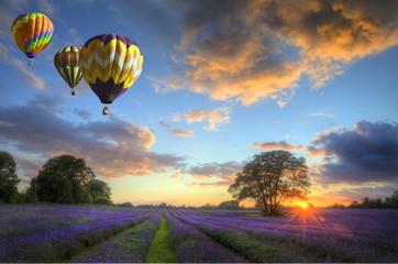 Printed roller blinds Balloon Hot air balloons flying over lavender landscape sunset