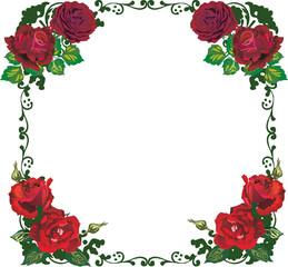 beautiful isolated red rose frame pattern