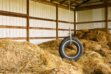 Old tire swing hanging from the rafters of a hay barn