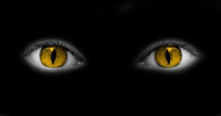 Yeux jaunes catwoman - fond noir