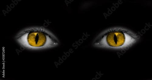 yeux jaunes catwoman fond noir photo libre de droits sur la banque d 39 images. Black Bedroom Furniture Sets. Home Design Ideas