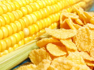 Corn flakes and corn closeup