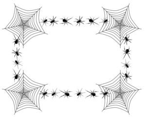 Spider border