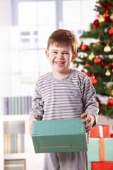 Laughing cute boy at christmas