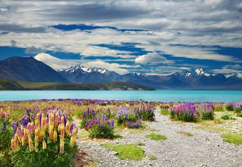 Wall Mural - Lake Tekapo, New Zealand