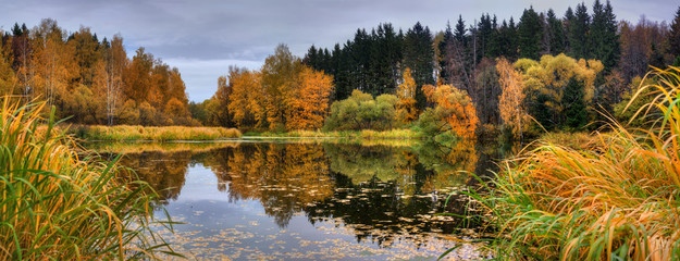 Panoramic landscape with forest lake in autumn