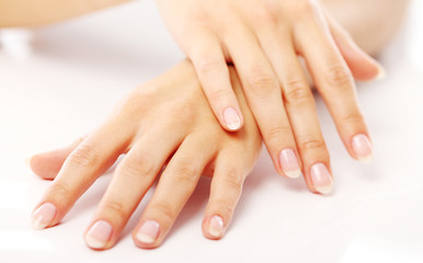 Poster de jardin Manicure Beautiful hands with french manicure