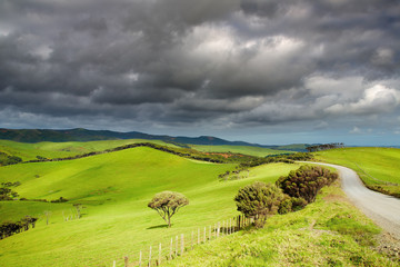 Wall Mural - New Zealand landscape