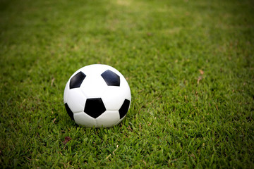 Football ball on grass