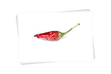 Peperoncino rosso su fotografie, fondo bianco