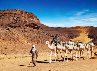 Fotorolgordijn Algerije Camels caravan in Sahara Desert, Algeria