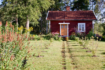 Beautiful summer cottage in Sweden.