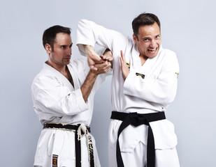 Karate vs Taekwondo, Partnertraining 05