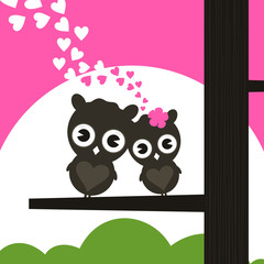Two owls have fallen in love and sit on a tree