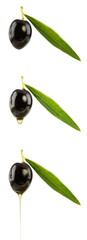 set of  black olives with olive oil drops