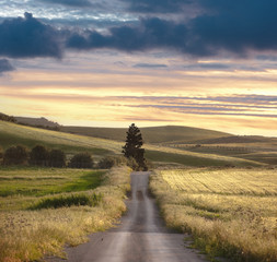 Rural Road Sunset