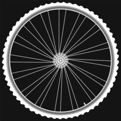 white Bike wheels isolated black background vector