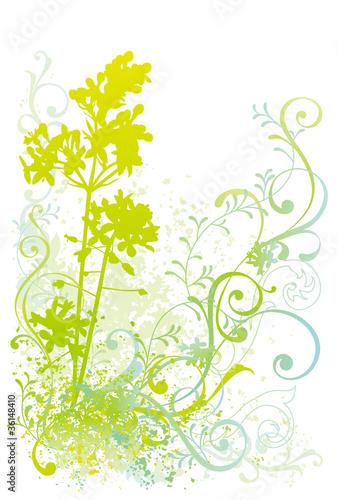 植物イラストfotoliacom の ストック画像とロイヤリティフリーの