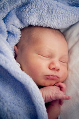 Newborn baby boy lying under blue blanket