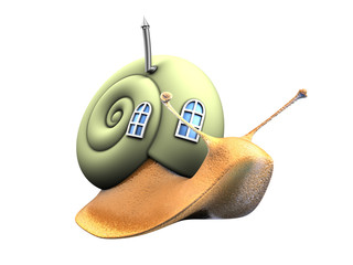 snail with eco home