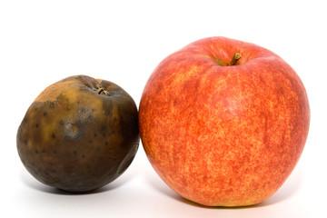 Frischer und alter Apfel 1