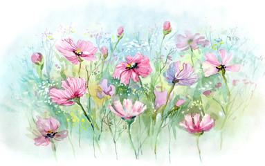summer flowers (series C)