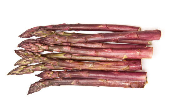 Purple passion asparagus  isolated on a white studio background.
