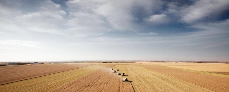 Harvest Aerial Landscape